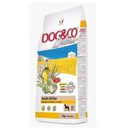Adragna Pet Food Cane Dog & Co Wellnes Adult Medium e Maxi Pollo e riso 12 Kg