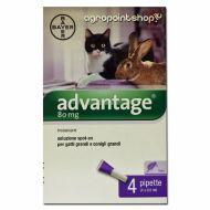 Bayer Advantage Spot On  80 per gatti oltre 4 kg - 4 tubetti