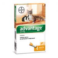 Bayer Advantage Spot On 40 Gatti 0-4 kg. - 4 tubetti