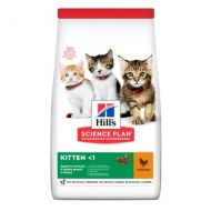 Hill's Science Plan Gatto Kitten Pollo 1,5 Kg