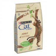 Purina Cat Chow Gatto Adult Anatra 10 kg