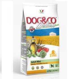 Adragna Pet Food Cane Dog & Co Wellnes Adult Mini Pollo e riso 2,5 Kg