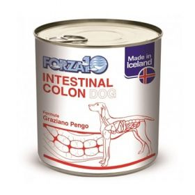 Forza 10 Cane Intestinal Colon Umido 390 Gr