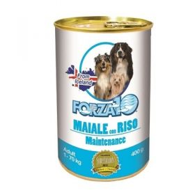 Forza 10 Maintenance Cane Adult Maiale con Riso 400 gr.