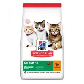 Hill's Science Plan Gatto Kitten Pollo 300 gr