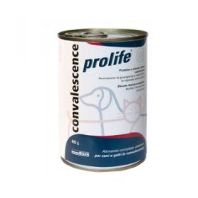 Prolife Wet Veterinary Diet Cane e Gatto Convalescence 200 Gr.