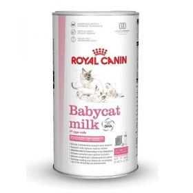 Royal Canin babycat milk 300 gr - Latte per Gatto