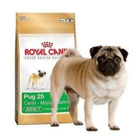 Royal Canin Cane Adult Pug Carlino 1,5 Kg