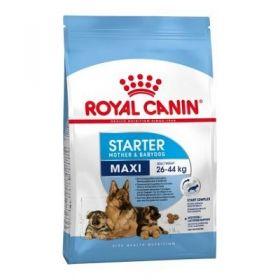 Royal Canin Cane Maxi Starter Mother & Babydog 4 kg