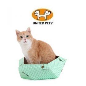 United Pets Cat in The Box Oliver Scatola in Cartone per Gatti